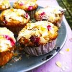 Healthy cranberry muffins met amandel & kokos topping