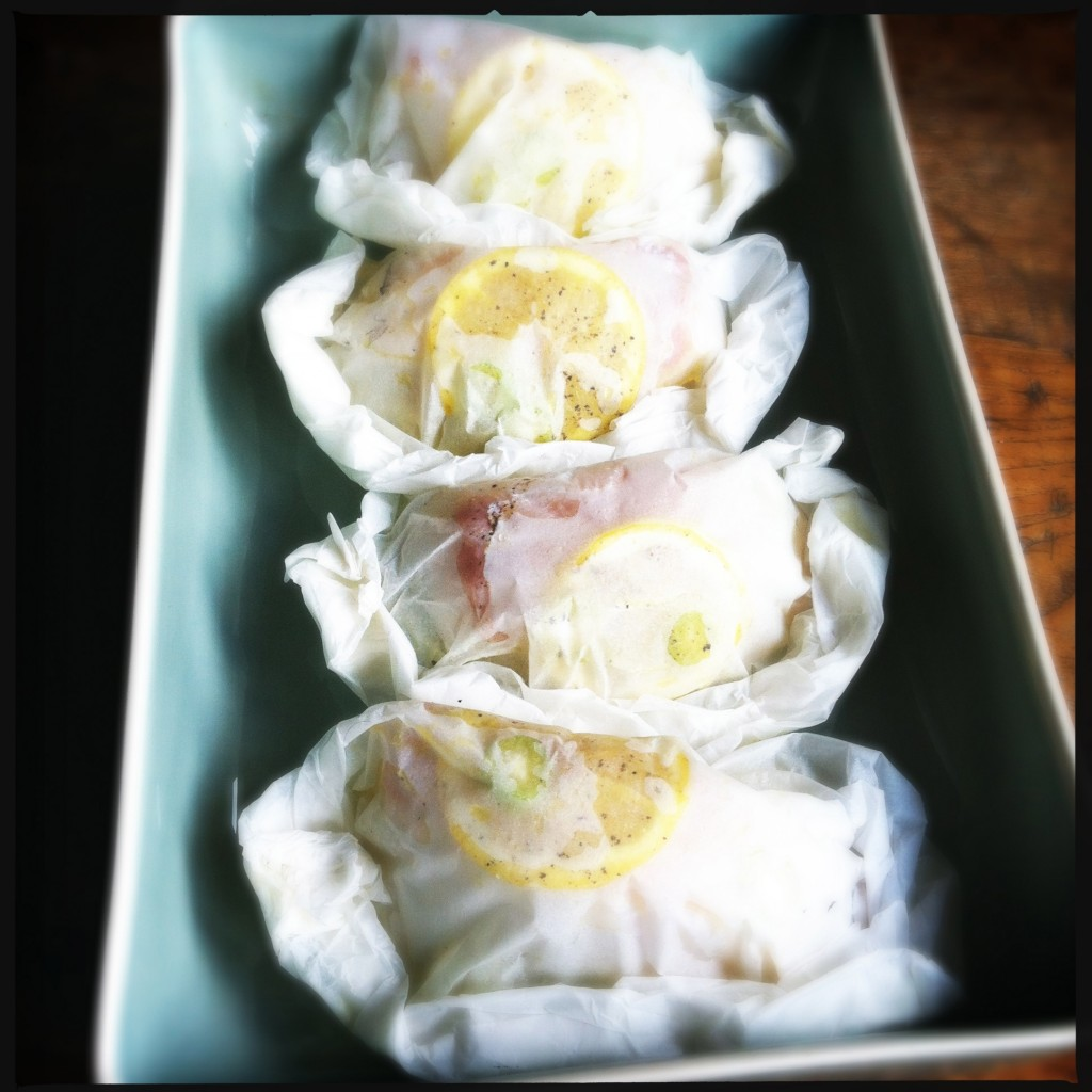 Pakketjes witvis met venkel & citroen Made by Ellen
