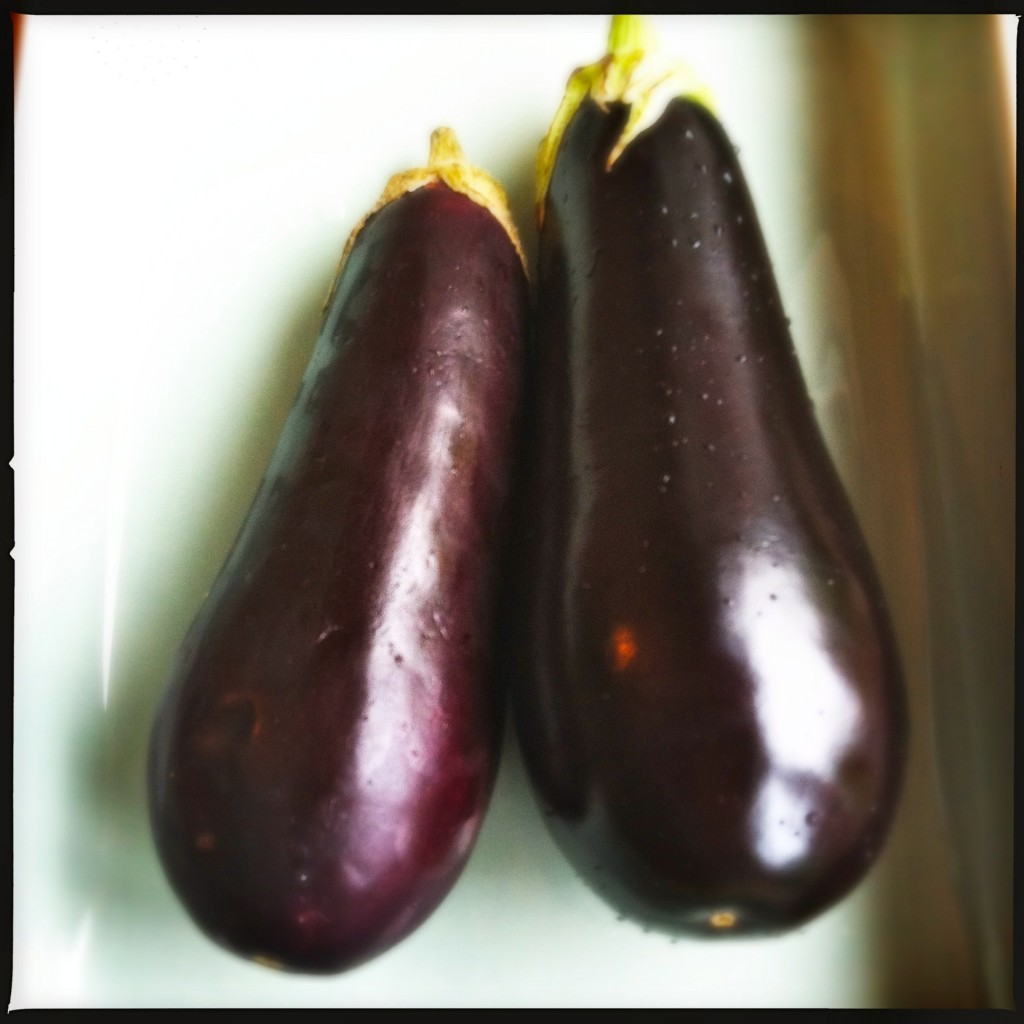 Aubergines Made by Ellen