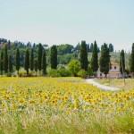 Vakantie Toscane – heerlijk genieten in Toscane