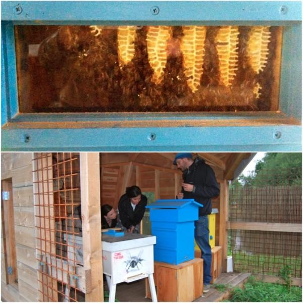 I love beeing Het Bijenpaleis Made by Ellen