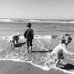 Strandtent De Staat in Den Haag