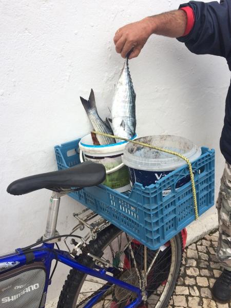 Lagos en de markt - Algarve Portugal