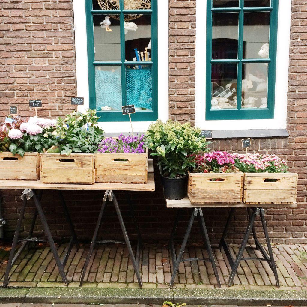 winactie Texel made by ellen
