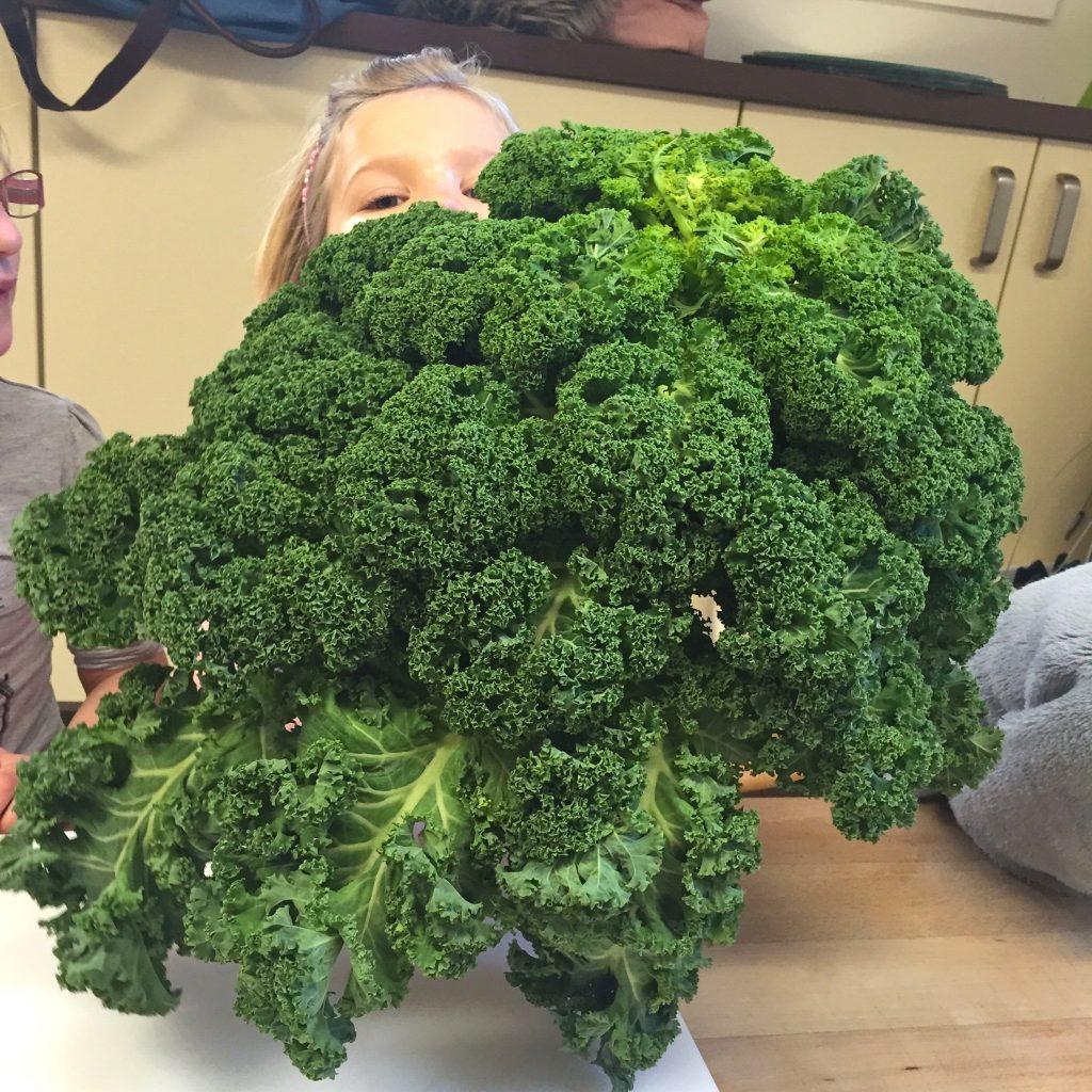 Ongekend Koken op school: makkelijke en gezonde (re) recepten | Made by Ellen UL-25