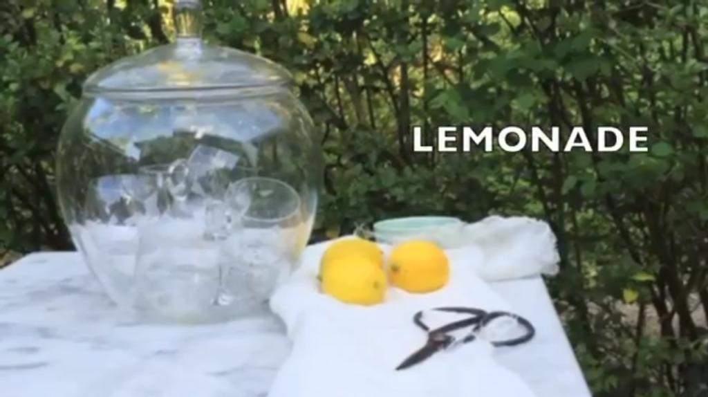 Limonade maken met citroen made by ellen made by ellen
