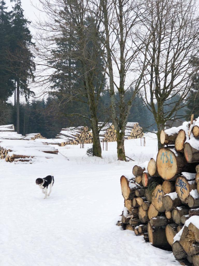Winterberg wintersport made by ellen
