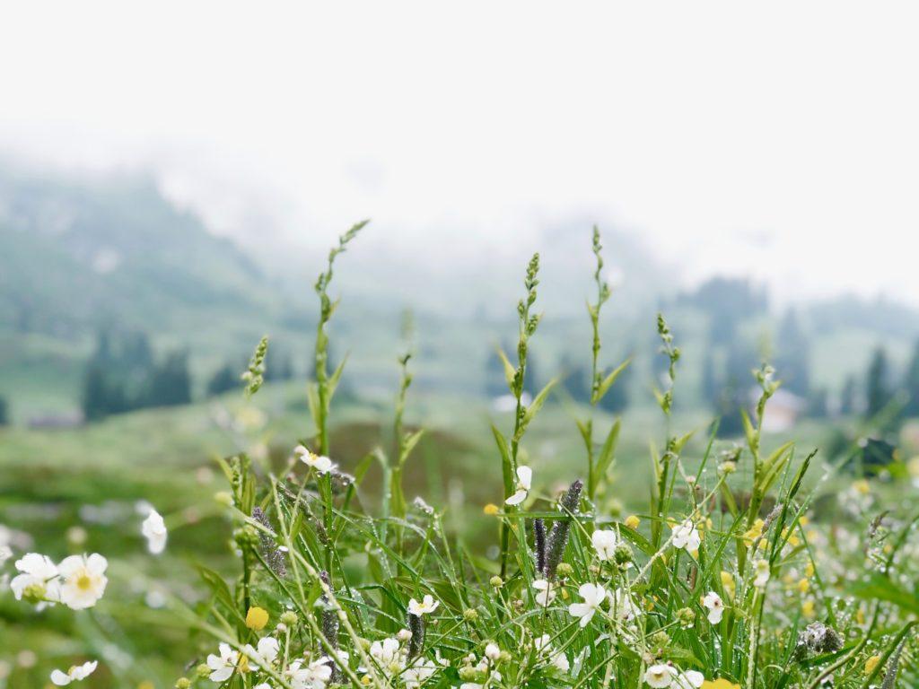 Wandelen naar de Körbersee in Oostenrijk Vorarlberg made by ellen