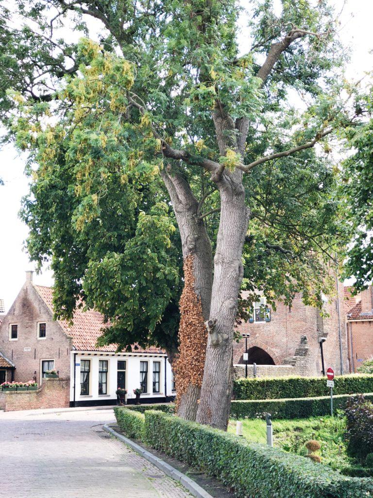 Hanzestad Hattem, gelderland, made by ellen