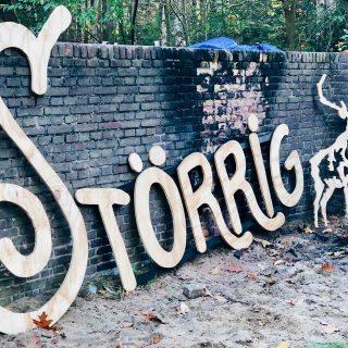Storrig festival Ede - wild op de veluwe, made by ellen