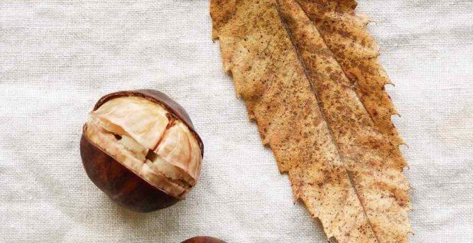 Tamme kastanjes koken en pellen