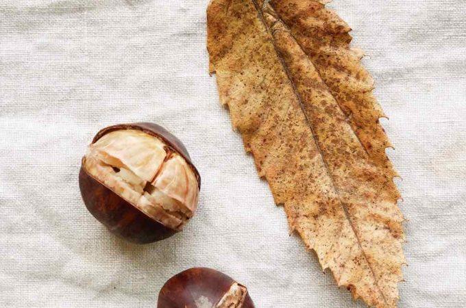 Tamme kastanjes kruiselings insnijden, koken en pellen