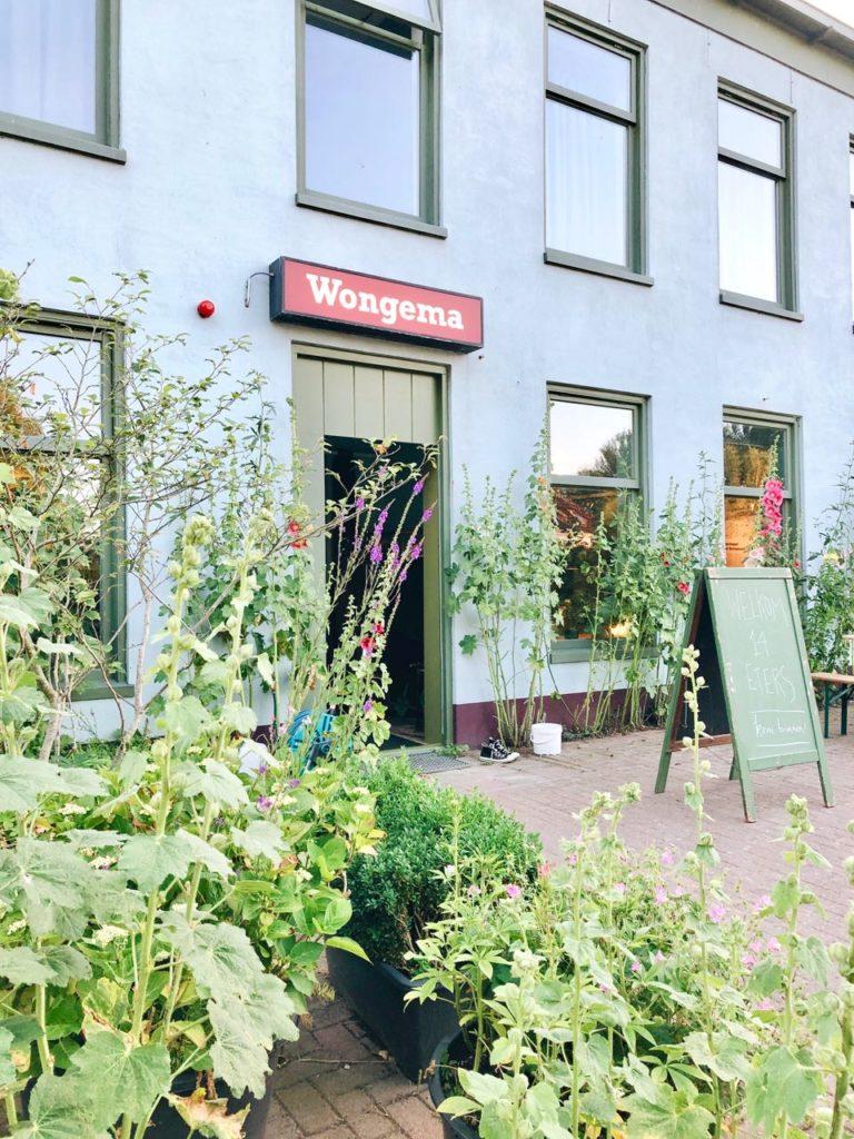 creatieve hotspot Wongema groningen