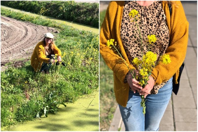 koolzaadbloemen plukken voor gestoomde asperges