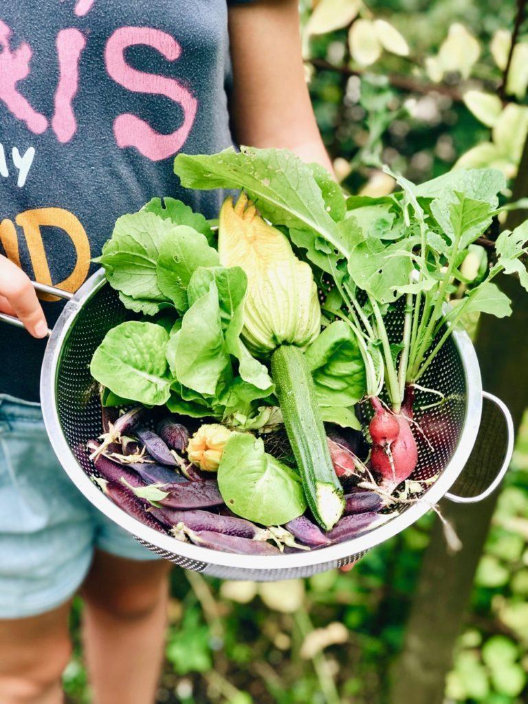 Moestuinsalade van verse groenten