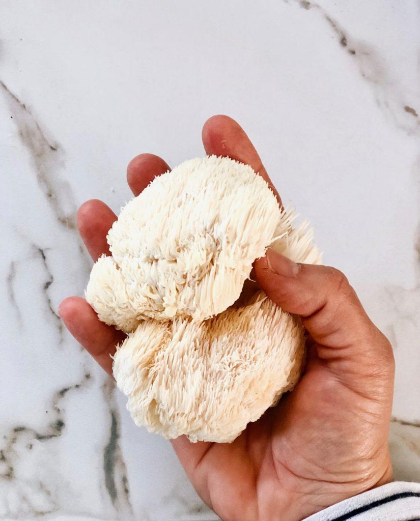 Lions mane recept en waar deze paddenstoel kopen
