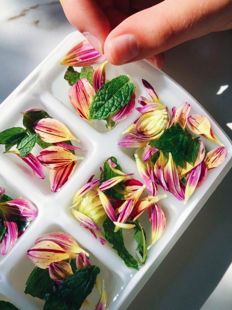 eetbare dahlia bloemen